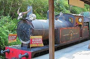 Image of Wildlife Express Train