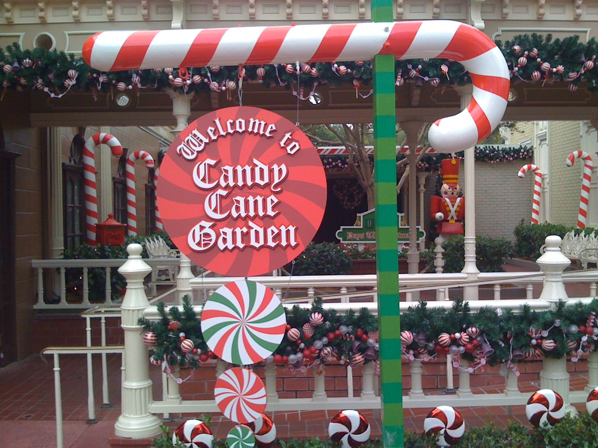 Candy cane lane is a perfect spot to have a one on one moment with