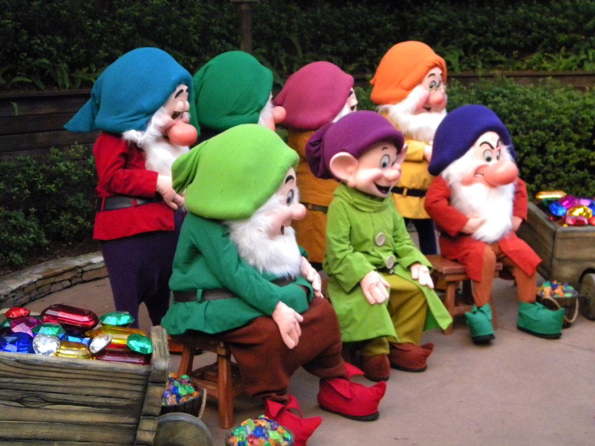 Seven Dwarfs Hats