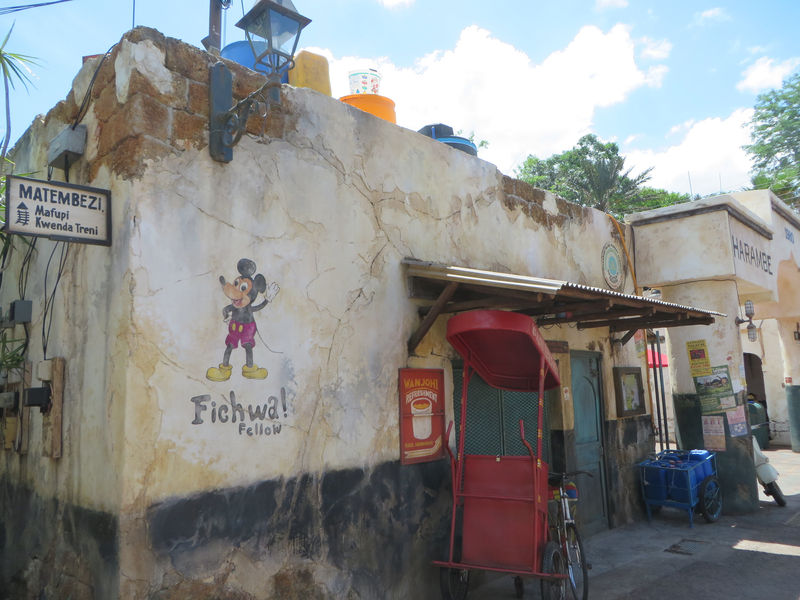 My Disney Top 5 - Things to See in Animal Kingdom's Africa