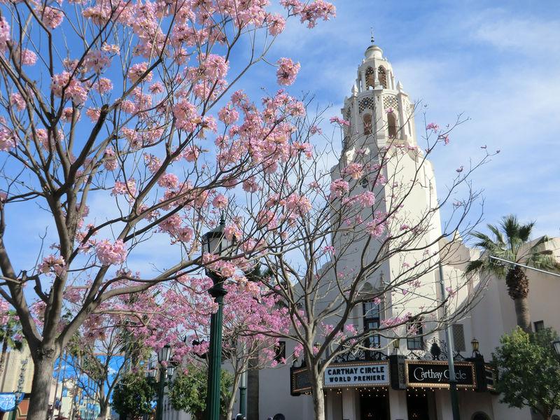 Disneyland Resort Update for July 19-25, 2021
