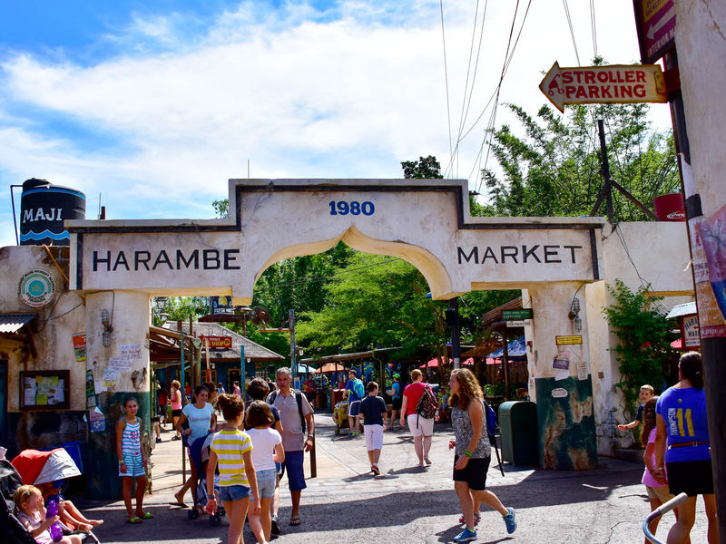 A Quick Tour of Animal Kingdom's Harambe Market