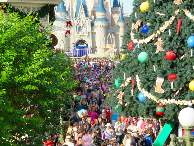 Walt Disney World Resort Update for December 22-28, 2015