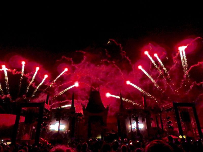 Walt Disney World Resort Update December 29, 2014 - January 4, 2016