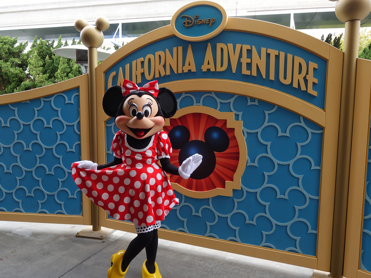 Mouseplanet disneyland resort update for june 13 19 2016 by minnie mouse greets visitors at the exclusive disney visa character location in disney california adventure photo by adrienne vincent phoenix kristyandbryce Choice Image