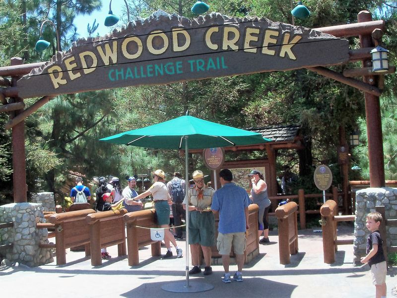 Redwood Creek Challenge Trail: The Adventure Awaits