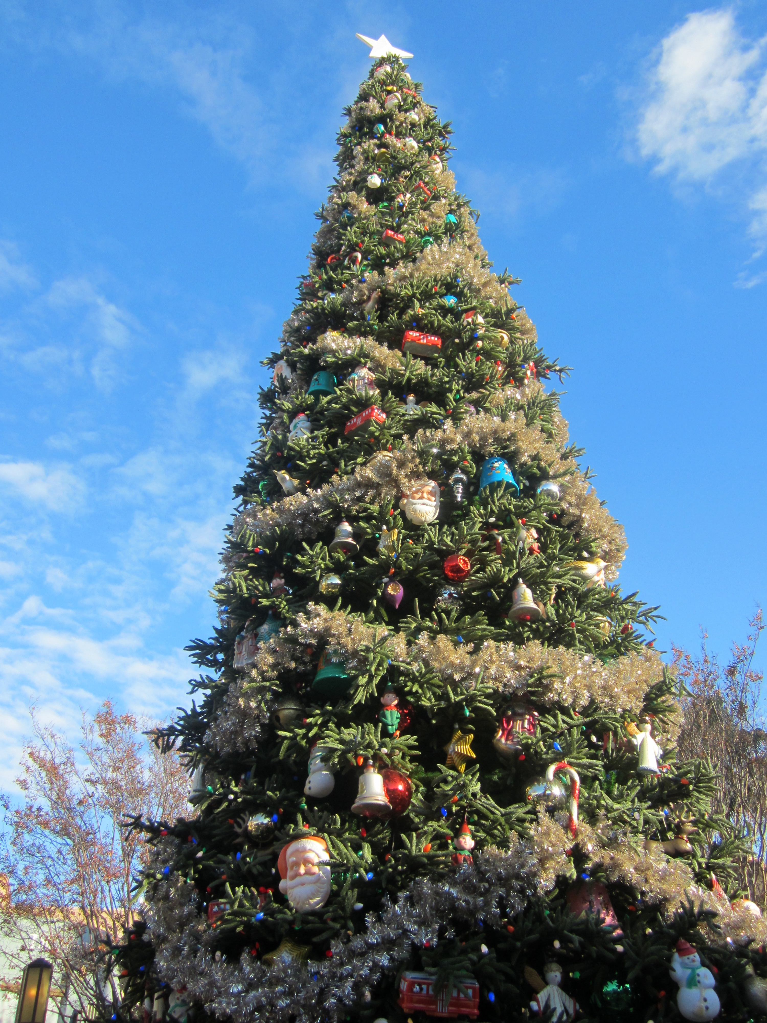 When Does Disneyland Decorate For Christmas.Mouseplanet Celebrating The Holidays At The Disneyland