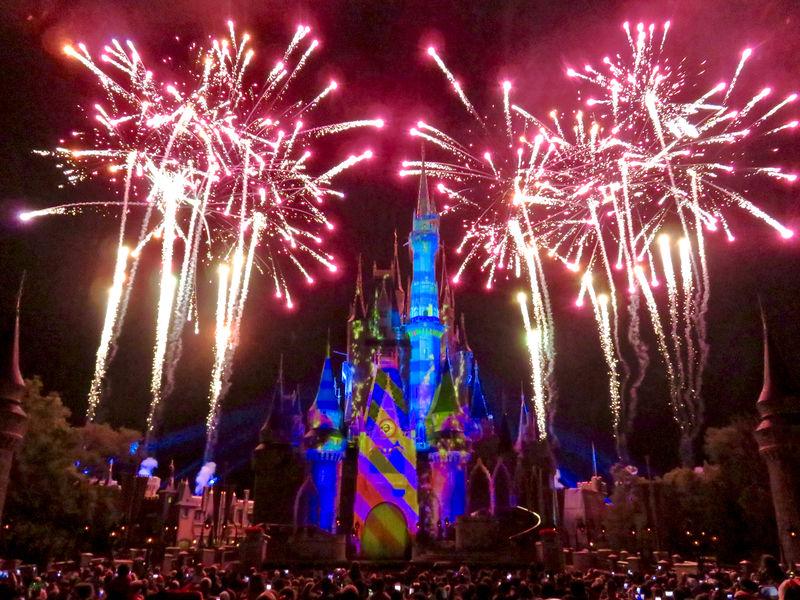 Walt Disney World Resort Update for November 22-28, 2016