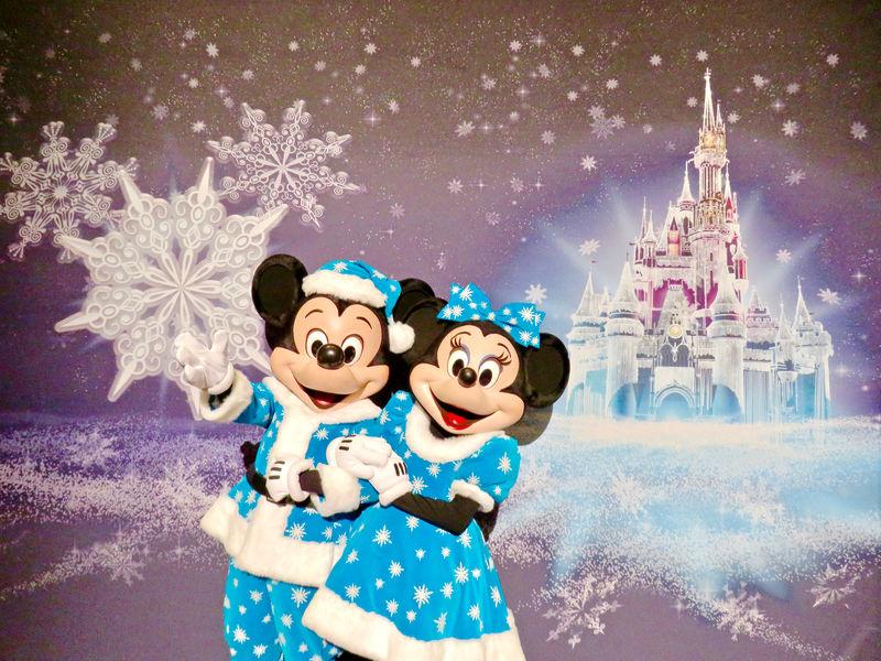 Walt Disney World Resort Update for December 13-19, 2016