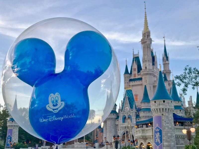 Walt Disney World Resort Update for January 24-30, 2017