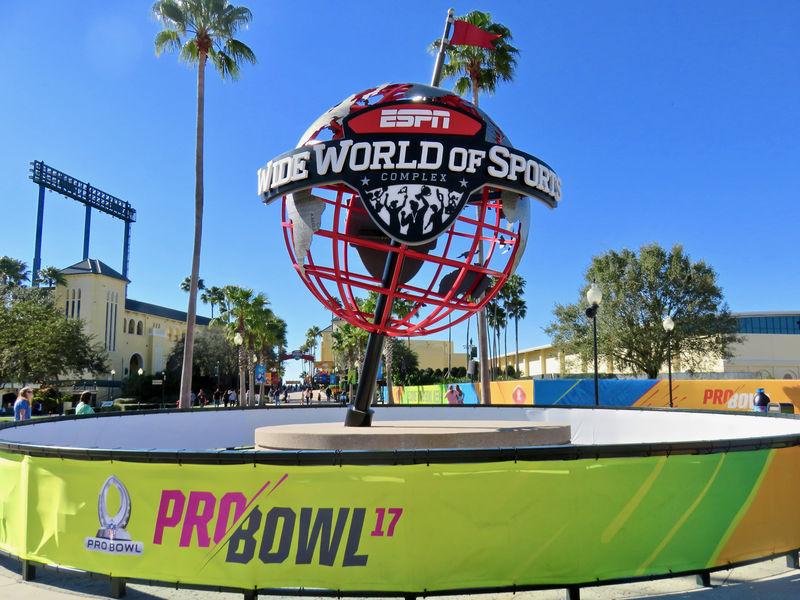 Walt Disney World Resort Update for January 31 - February 6, 2017