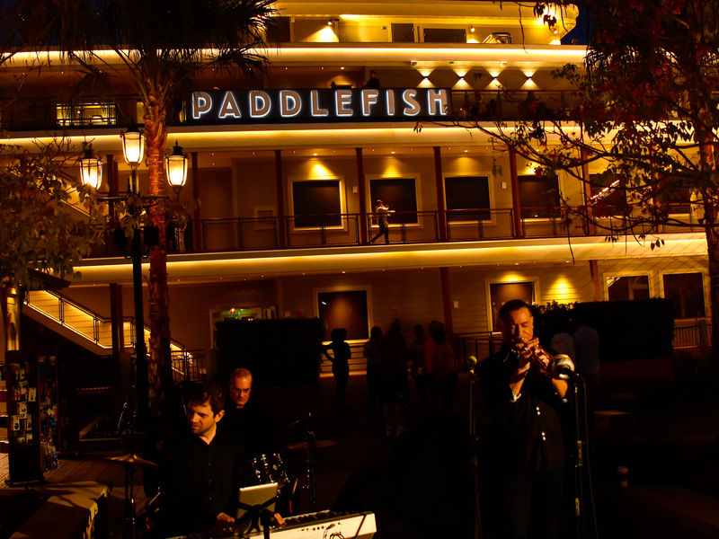 Disney Springs' Newest Seafood Restaurant, Paddlefish, is Open For Business