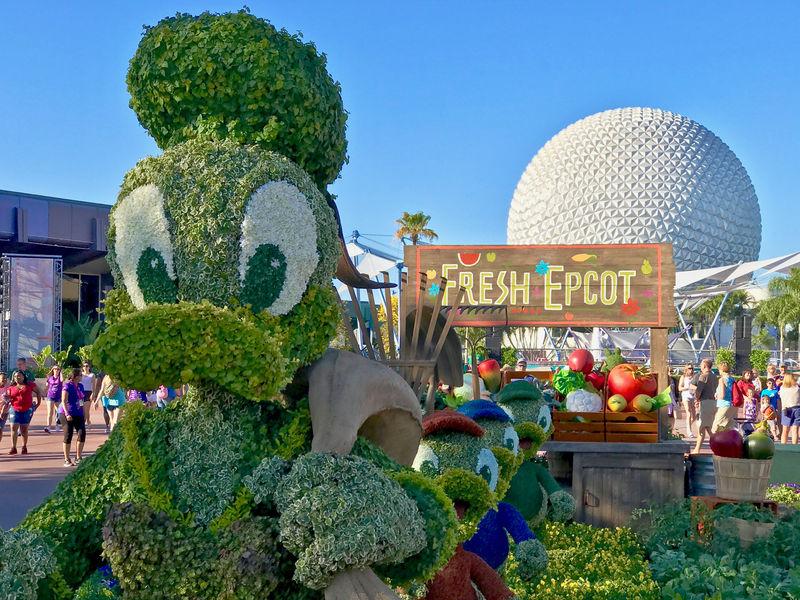 Walt Disney World Resort Update for February 28 - March 6, 2017
