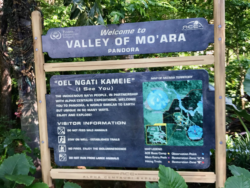 My Disney Top 5 - Things to See in Pandora - The World of Avatar at Disney's Animal Kingdom