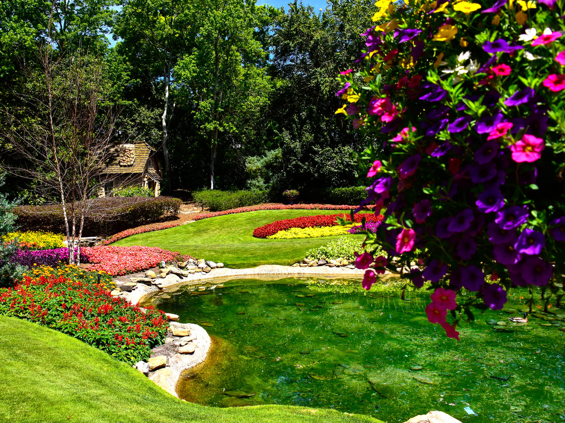 Mouseplanet canada a photo tour by donald and bonnie fink the beauty of victoria gardens thecheapjerseys Image collections