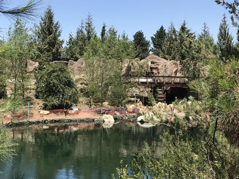 Disneyland Resort Update for June 19 - 25, 2017