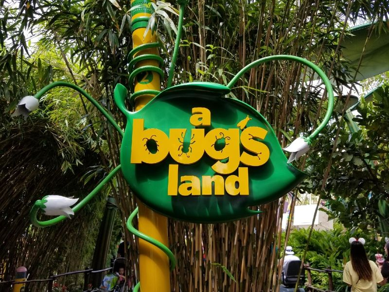A Last Look at 'A Bug's Land'