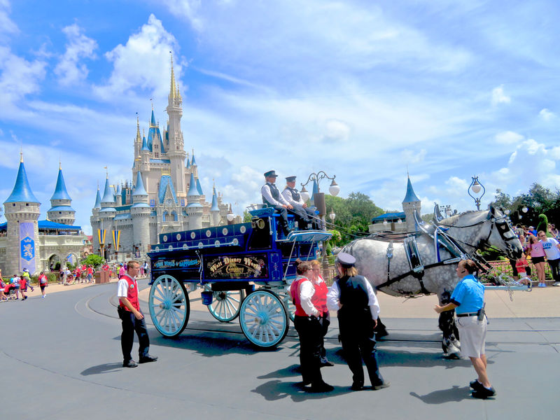 Walt Disney World Resort Update for August 7-13, 2018