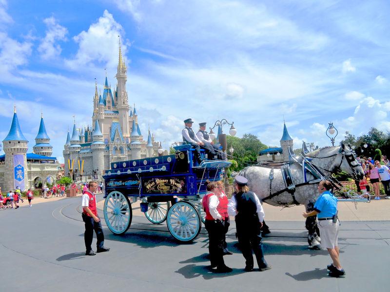 Walt Disney World Resort Update for August 7-13, 2018