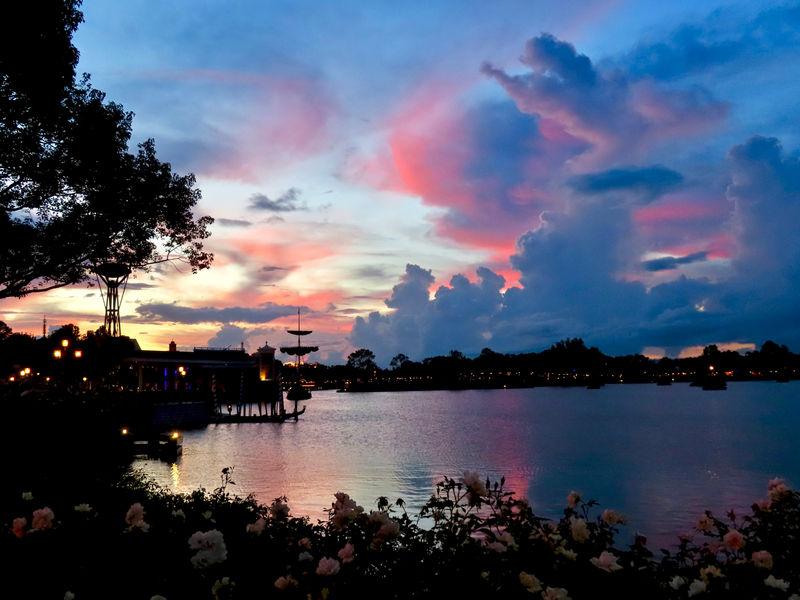 Walt Disney World Resort Update for October 2-8, 2018