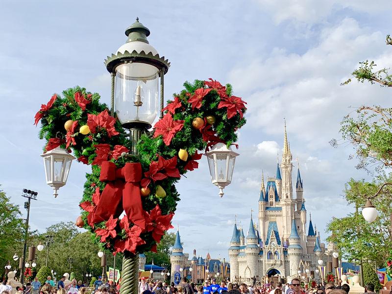 Walt Disney World Resort Update for November 6-12, 2018