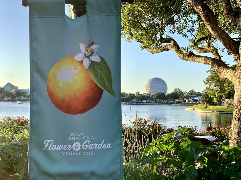 Walt Disney World Resort Update for May 21-27, 2019