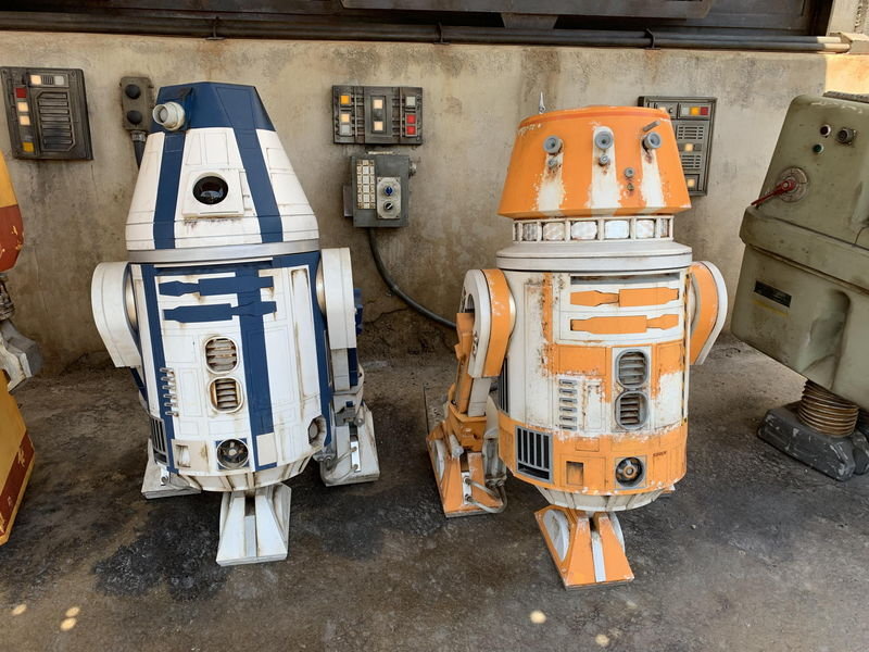 Disneyland Resort Update for June 3-9, 2019