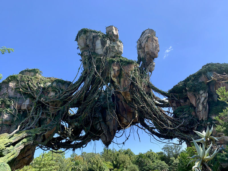 Walt Disney World Resort Update for October 15-21, 2019