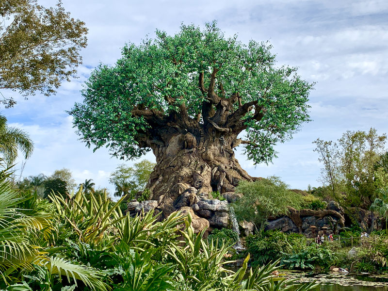 Walt Disney World Resort Update for March 17-23, 2020