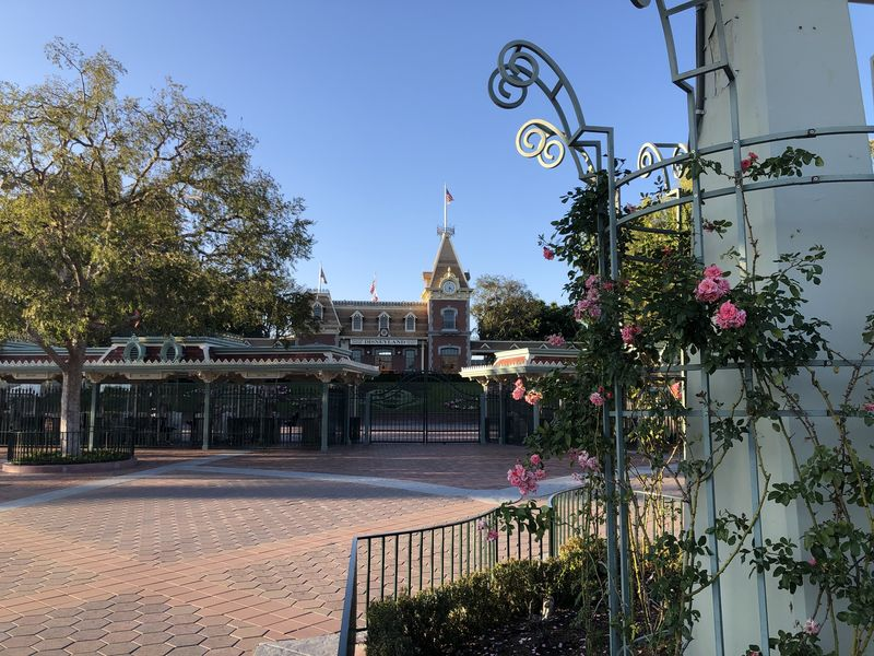 Missing the Sights and Sounds of Disneyland Park