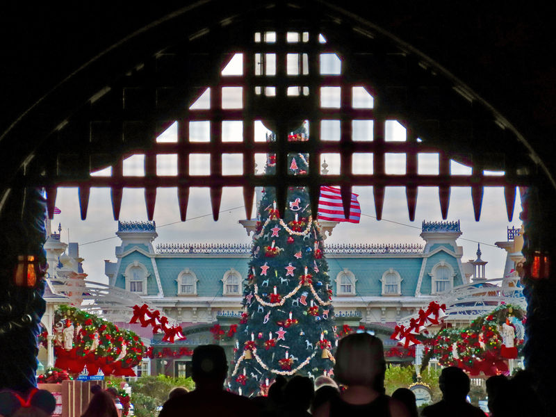 Walt Disney World Resort Update for November 10-16, 2020