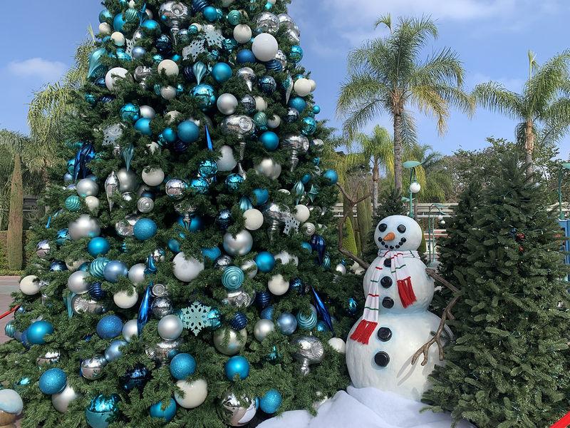Disneyland Resort End-of-Year Update for 2020
