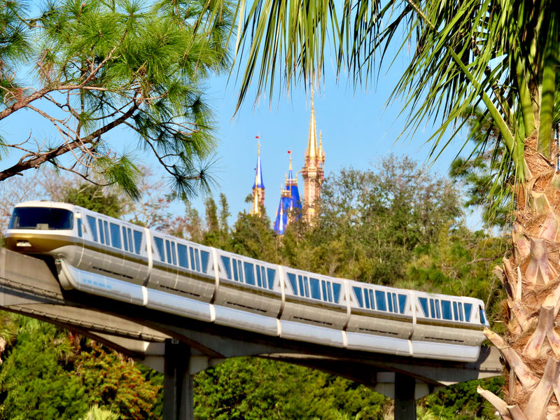 Walt Disney World Resort Update for January 20-25, 2021