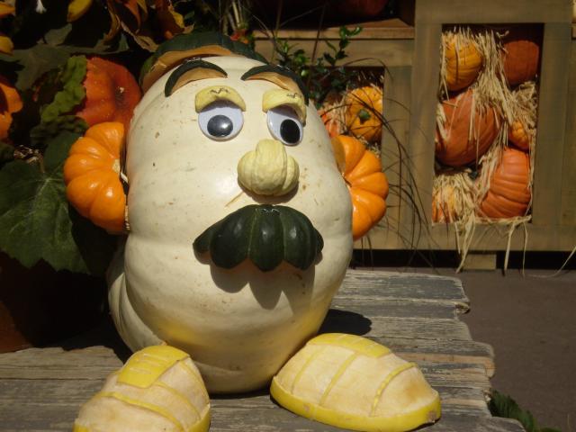 Mr. Potato Head as Mr. Pumpkin Head at Big Thunder Ranch. Photo by Shoshana Lewin.